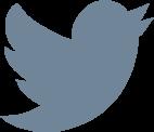 Follow Bluebird 3D on Twitter