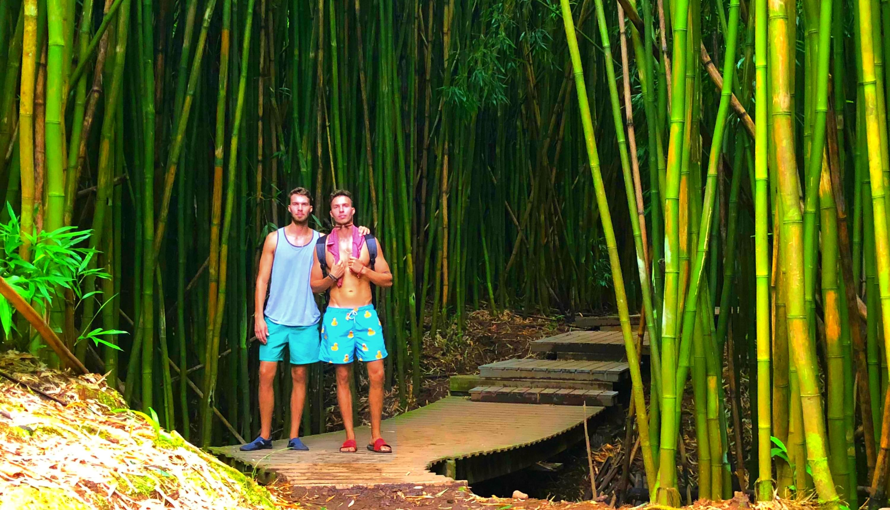 maui bamboo forest - Mikkelsen Twins - - % category