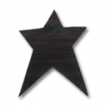 primitive star applique