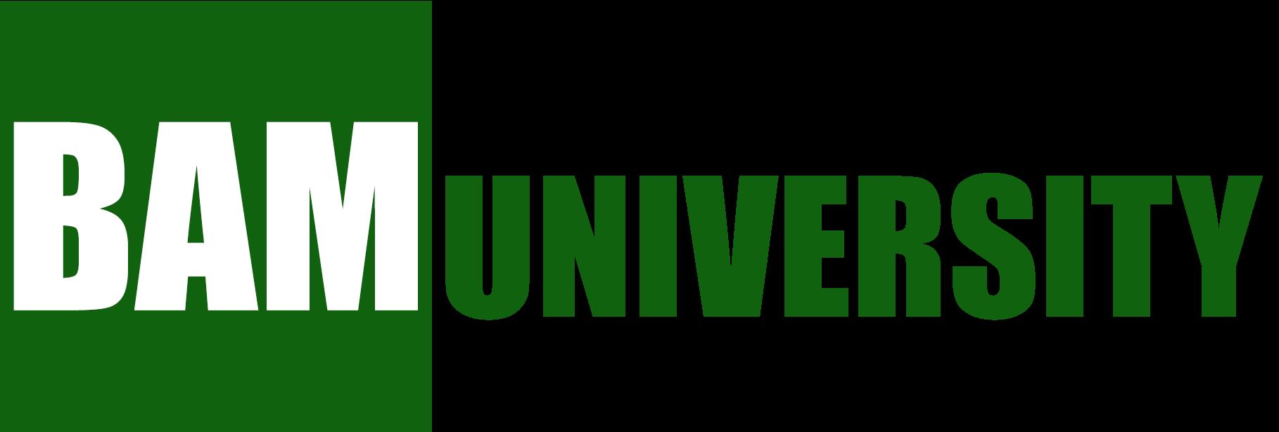 Build And Monetize University