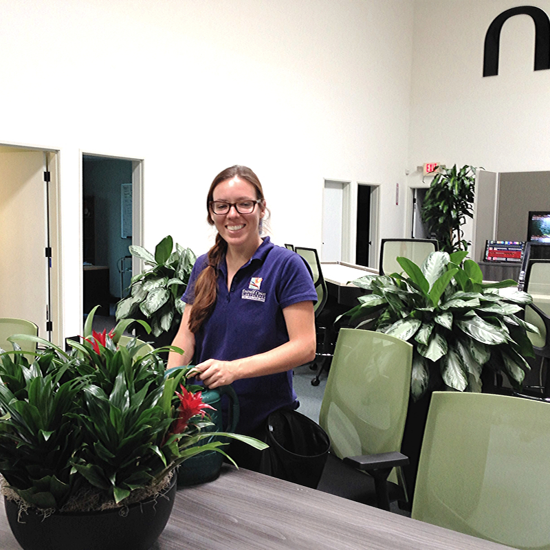 Officeplant rental and maintenance service