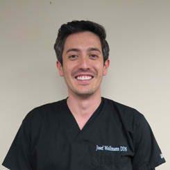 Image of Dr. Josef Wollmann