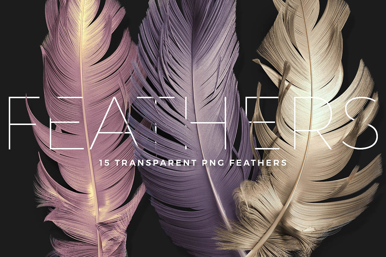 Transparent PNG Feather Renders Pack