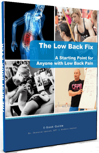 the low back fix guide book