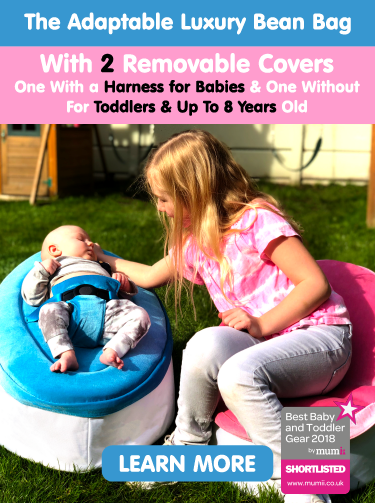 Snuggle Seat - the adaptable beanbag for babies and toddlers