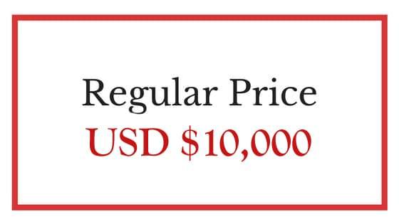 TEDx Coaching Price
