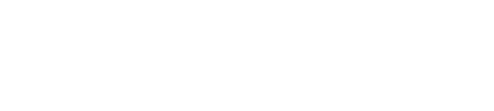 Thunderhawk Logo