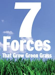 7 Forces That Grow Green Grass