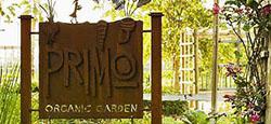 Primo Organic Garden