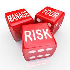 Risk Assessment Platinum Bridge Wealth Strategies