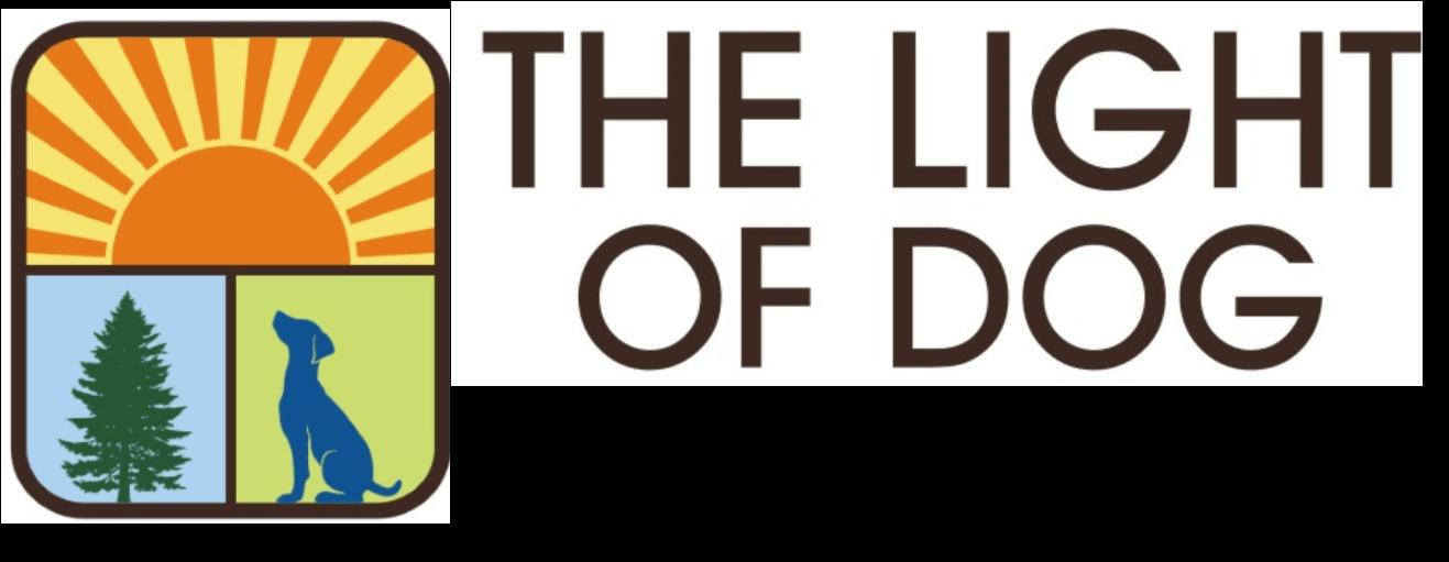 The Light of Dog