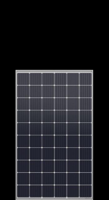 Q.PEAK-G4.1  300-310 Wp