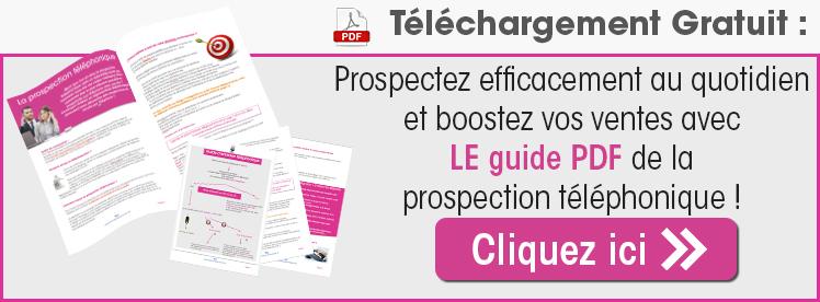 Prospection téléphonique PDF